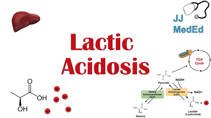 Lactic Acid Build Up: How to Get Rid of It and What It Is!